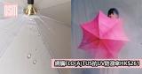 網購FLO(A)TUS抗UV防潑雨傘HK$261 +直運香港/澳門